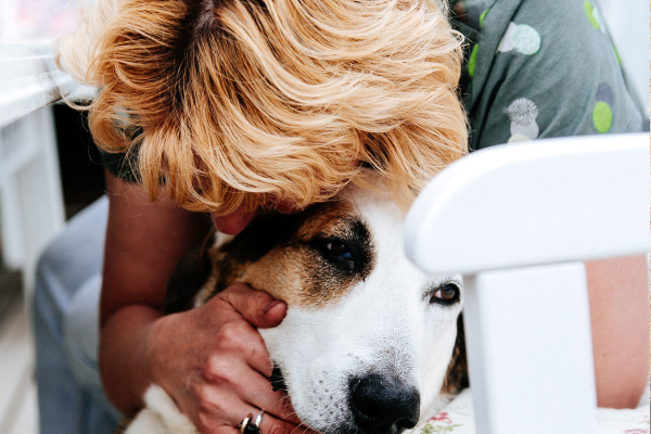 6 Easy Ways You Can Change a Pet's Life | AtlanticVetSeattle.com