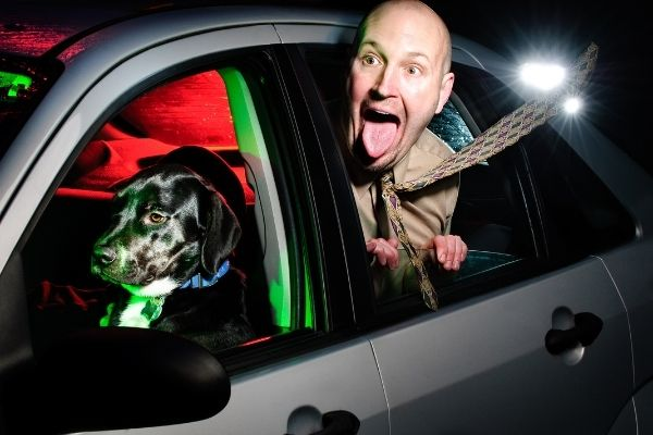 Dog driving car and man in backseat with head out window