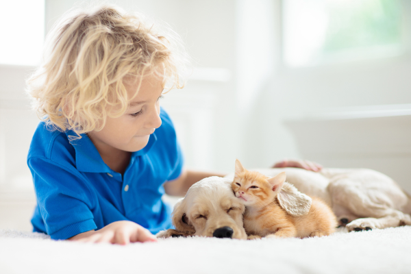 How to Incorporate Pets into Homeschooling | atlanticvetseattle.com