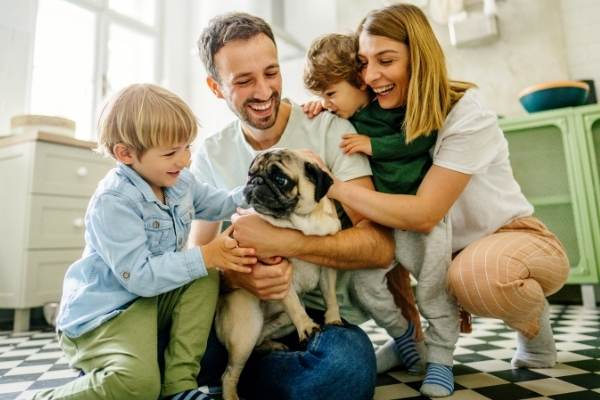 Dog Sharing: Is Co-Ownership Right for You? | atlanticvetseattle.com